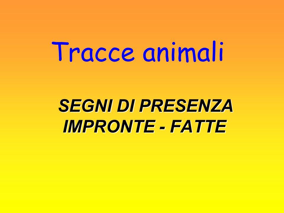 Tracce animali SEGNI DI PRESENZA IMPRONTE - FATTE