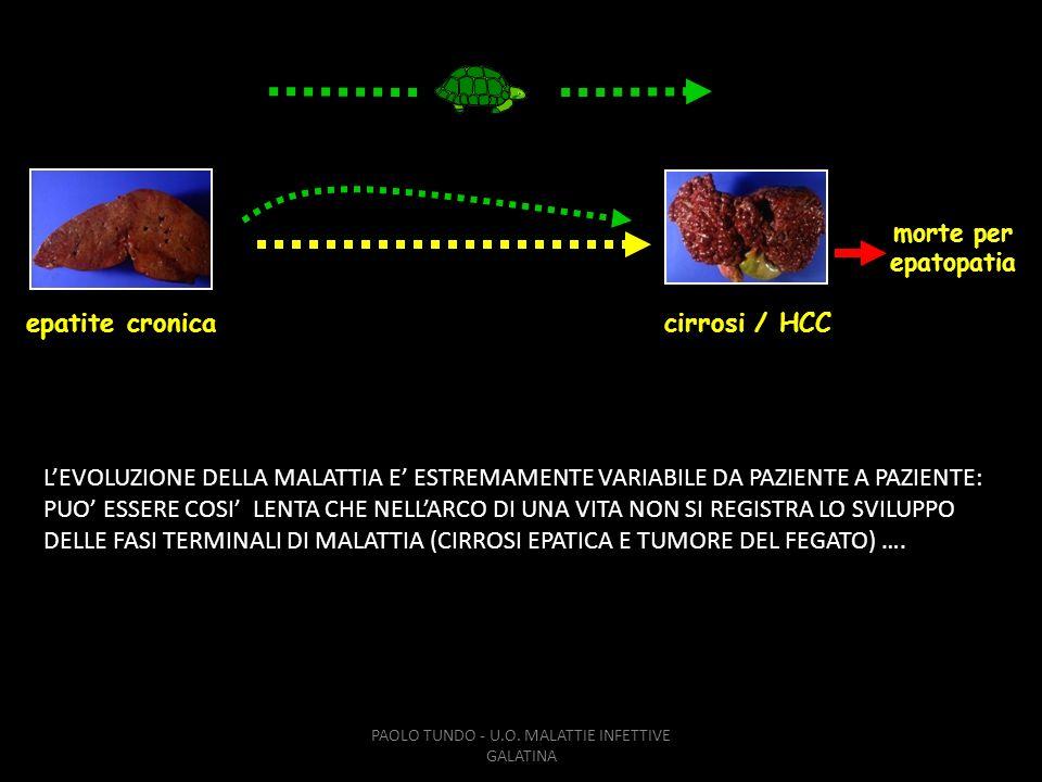 epatite cronica morte per epatopatia cirrosi / HCC PAOLO TUNDO - U.O. MALATTIE INFETTIVE GALATINA LEVOLUZIONE DELLA MALATTIA E ESTREMAMENTE VARIABILE