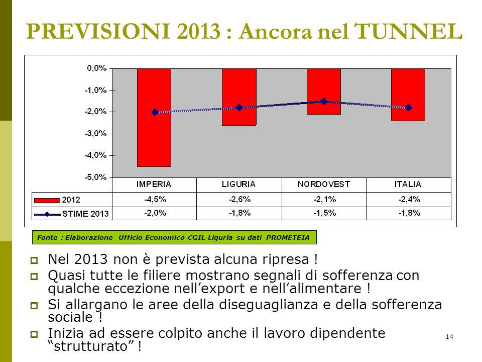 14 PREVISIONI 2013 : Ancora nel TUNNEL Nel 2013 non è prevista alcuna ripresa .