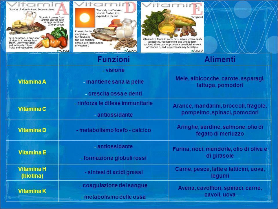 FunzioniAlimenti Vitamina A - visione - mantiene sana la pelle - crescita ossa e denti Mele, albicocche, carote, asparagi, lattuga, pomodori Vitamina