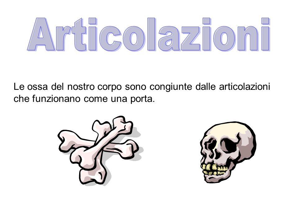 Le ossa del nostro corpo sono congiunte dalle articolazioni che funzionano come una porta.