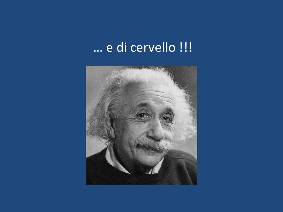 … e di cervello !!!