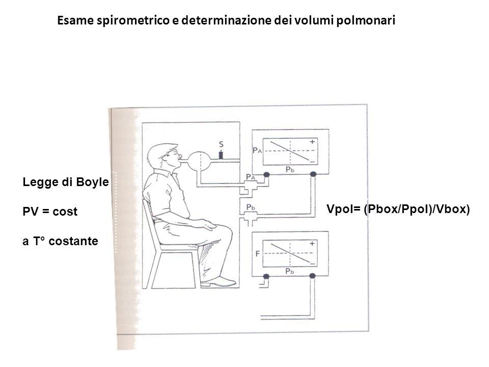 Esame spirometrico e determinazione dei volumi polmonari Metodo pletismografico Vpol= (Pbox/Ppol)/Vbox) Legge di Boyle PV = cost a T° costante