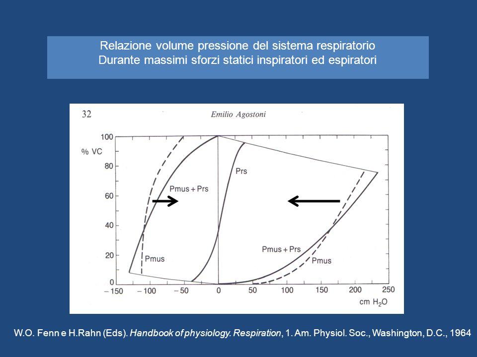 Relazione volume pressione del sistema respiratorio Durante massimi sforzi statici inspiratori ed espiratori W.O. Fenn e H.Rahn (Eds). Handbook of phy