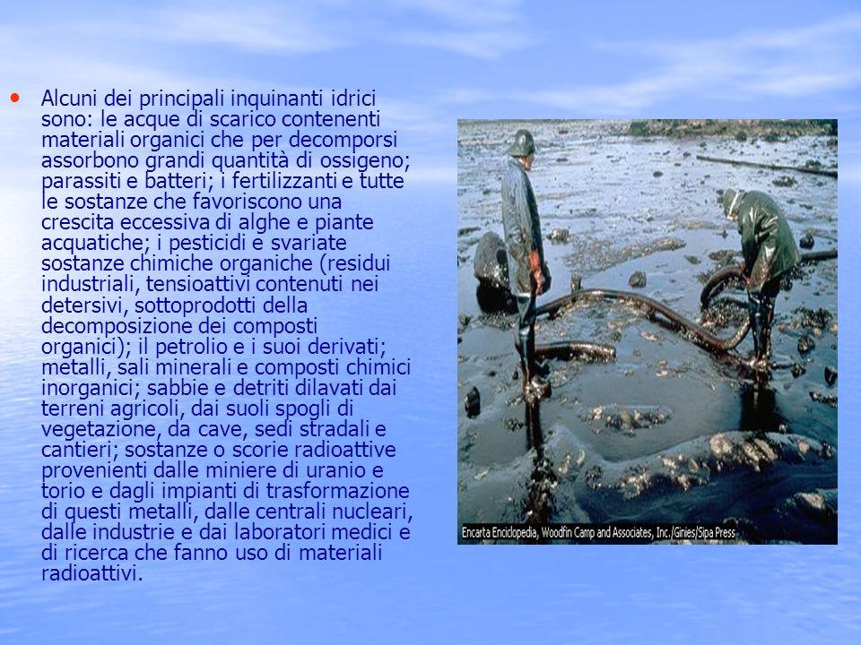 Alcuni dei principali inquinanti idrici sono: le acque di scarico contenenti materiali organici che per decomporsi assorbono grandi quantità di ossigeno; parassiti e batteri; i fertilizzanti e tutte le sostanze che favoriscono una crescita eccessiva di alghe e piante acquatiche; i pesticidi e svariate sostanze chimiche organiche (residui industriali, tensioattivi contenuti nei detersivi, sottoprodotti della decomposizione dei composti organici); il petrolio e i suoi derivati; metalli, sali minerali e composti chimici inorganici; sabbie e detriti dilavati dai terreni agricoli, dai suoli spogli di vegetazione, da cave, sedi stradali e cantieri; sostanze o scorie radioattive provenienti dalle miniere di uranio e torio e dagli impianti di trasformazione di questi metalli, dalle centrali nucleari, dalle industrie e dai laboratori medici e di ricerca che fanno uso di materiali radioattivi.