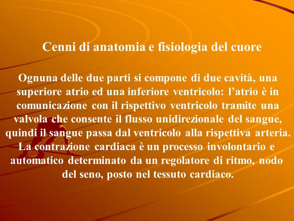 Cenni di anatomia e fisiologia del cuore Il cuore è un muscolo, miocardio, delle dimensioni di un pugno, posizionato al centro della cavità toracica,
