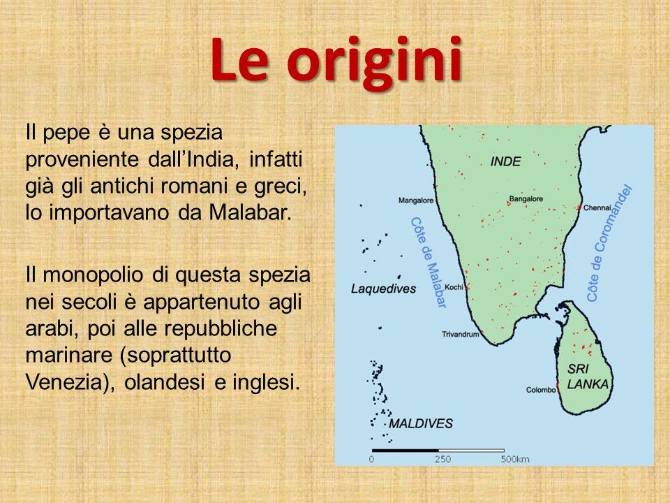 Le origini Il pepe è una spezia proveniente dallIndia, infatti già gli antichi romani e greci, lo importavano da Malabar. Il monopolio di questa spezi