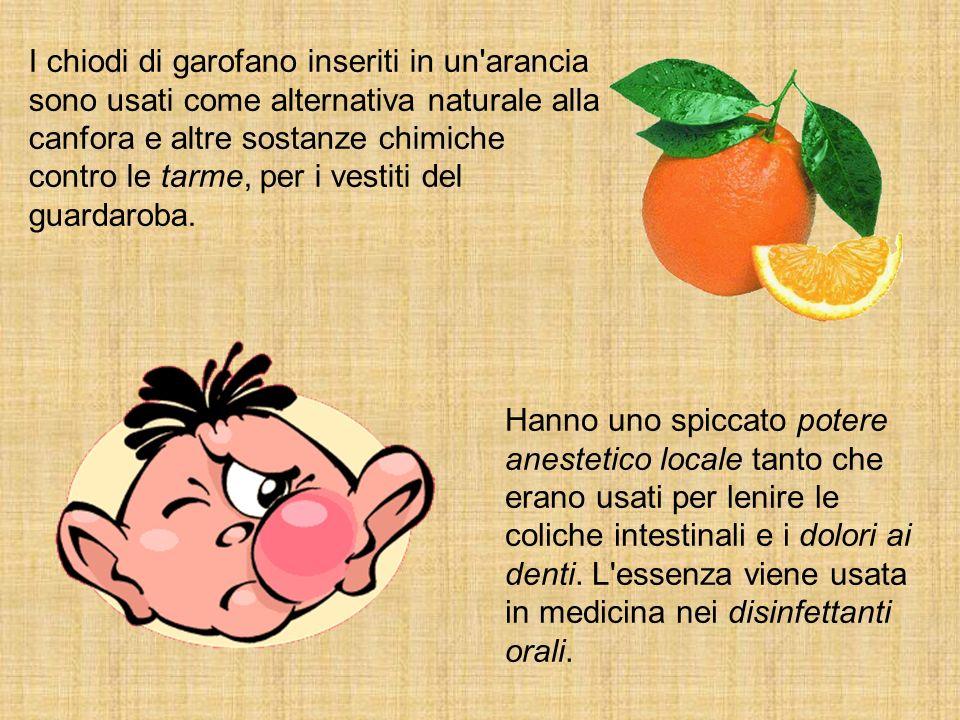 I chiodi di garofano inseriti in un'arancia sono usati come alternativa naturale alla canfora e altre sostanze chimiche contro le tarme, per i vestiti