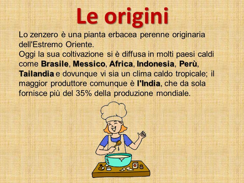 Le origini Lo zenzero è una pianta erbacea perenne originaria dell'Estremo Oriente. BrasileMessicoAfricaIndonesiaPerù Tailandia l'India Oggi la sua co