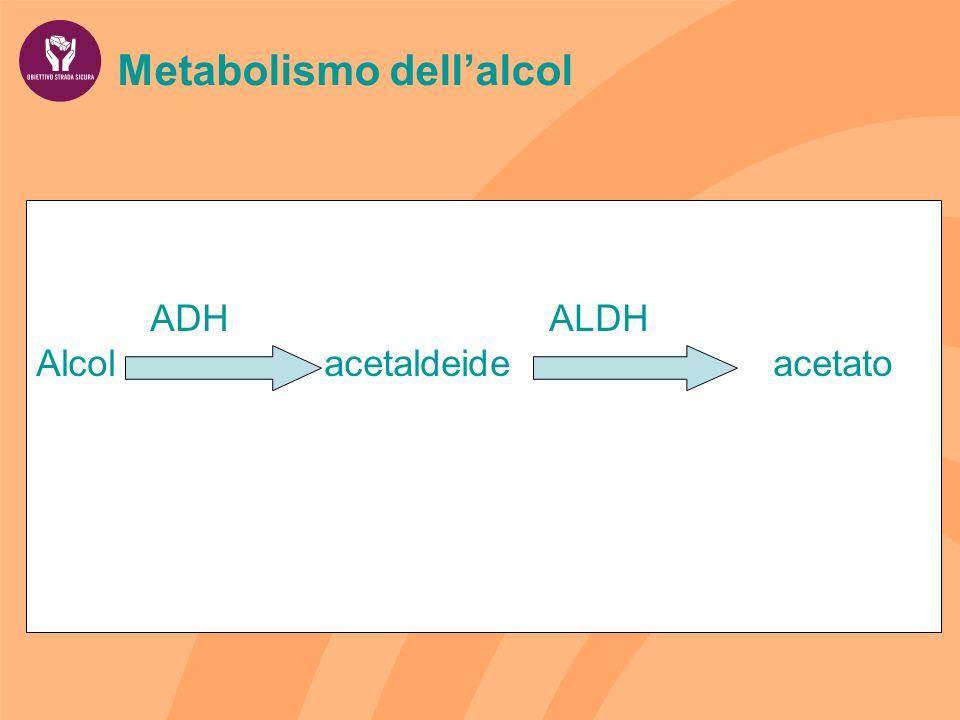 Metabolismo dellalcol ADH ALDH Alcol acetaldeide acetato