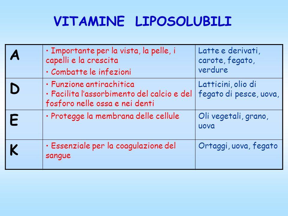 VITAMINE LIPOSOLUBILI A Importante per la vista, la pelle, i capelli e la crescita Combatte le infezioni Latte e derivati, carote, fegato, verdure D F