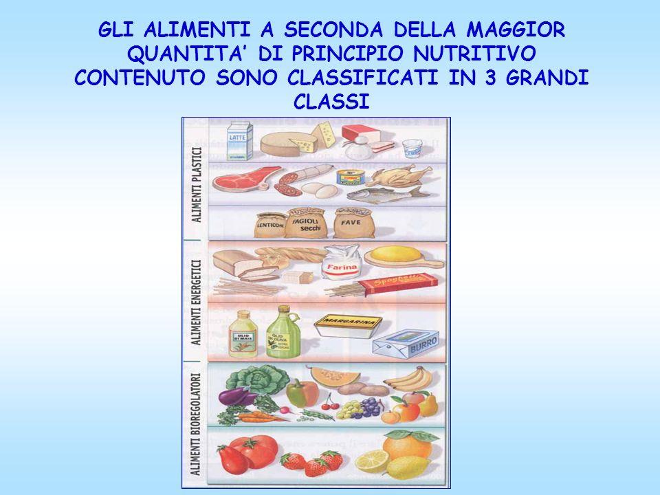 GLI ALIMENTI A SECONDA DELLA MAGGIOR QUANTITA DI PRINCIPIO NUTRITIVO CONTENUTO SONO CLASSIFICATI IN 3 GRANDI CLASSI