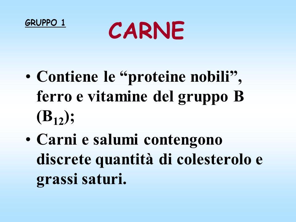 CARNE Contiene le proteine nobili, ferro e vitamine del gruppo B (B 12 ); Carni e salumi contengono discrete quantità di colesterolo e grassi saturi.