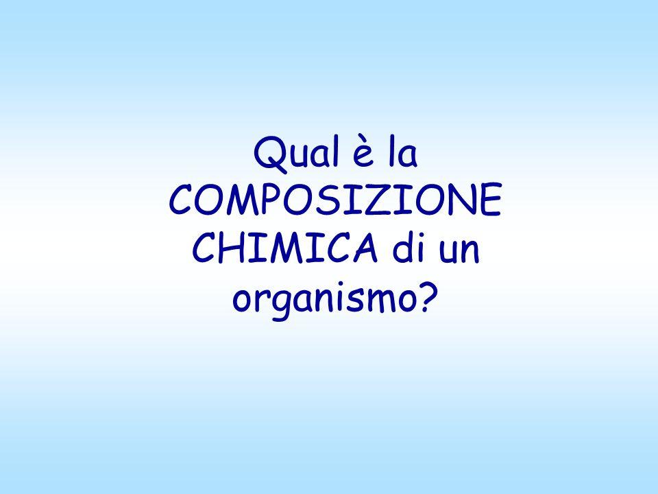 Qual è la COMPOSIZIONE CHIMICA di un organismo?