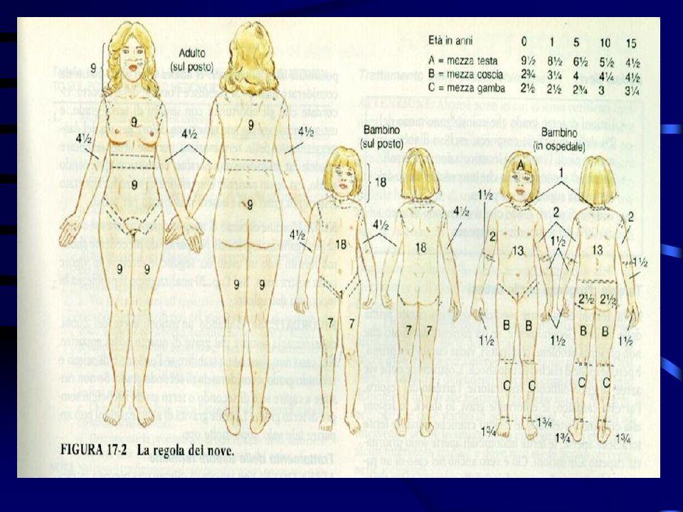3° grado:distruzione di tutti gli strati della cute ed anche dei tessuti sottostanti (cute carbonizzata) 2° grado:compaiono bolle o/e vescicole e dolo