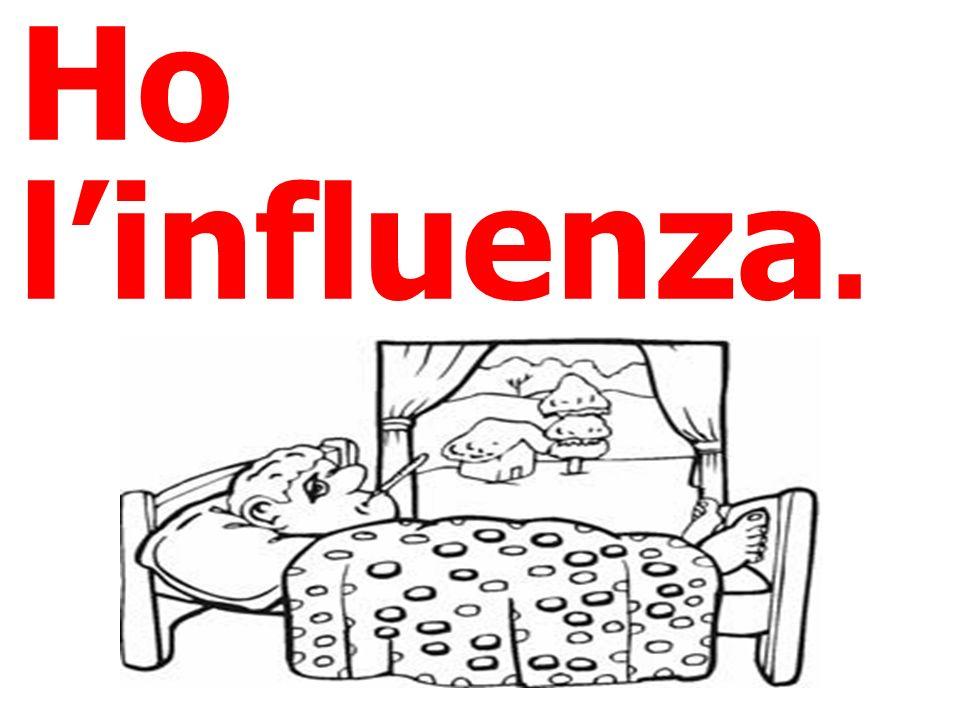 Ho linfluenza.