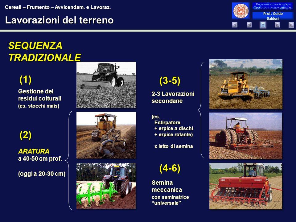 Prof. Guido Baldoni Prof. Guido Baldoni Lavorazioni del terreno 2-3 Lavorazioni secondarie (es. Estirpatore + erpice a dischi + erpice rotante) x lett