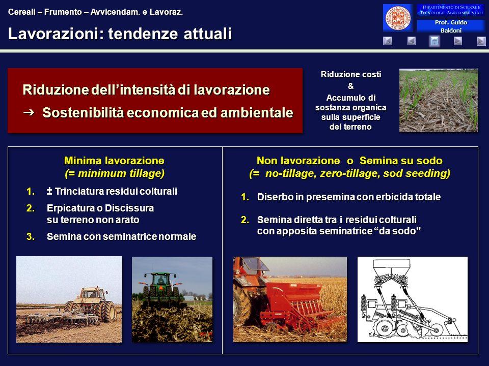 Prof. Guido Baldoni Prof. Guido Baldoni Lavorazioni: tendenze attuali Non lavorazione o Semina su sodo (= no-tillage, zero-tillage, sod seeding) 1.Dis