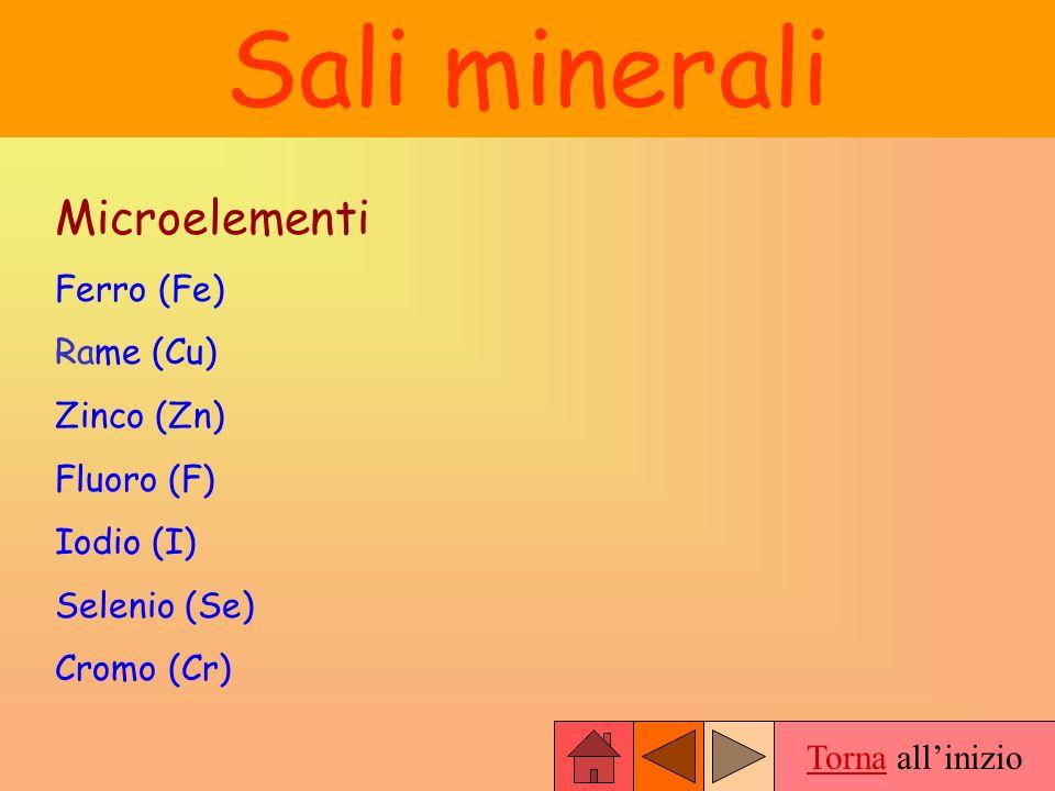 Torna allinizio Sali minerali Microelementi Ferro (Fe) Rame (Cu) Zinco (Zn) Fluoro (F) Iodio (I) Selenio (Se) Cromo (Cr)