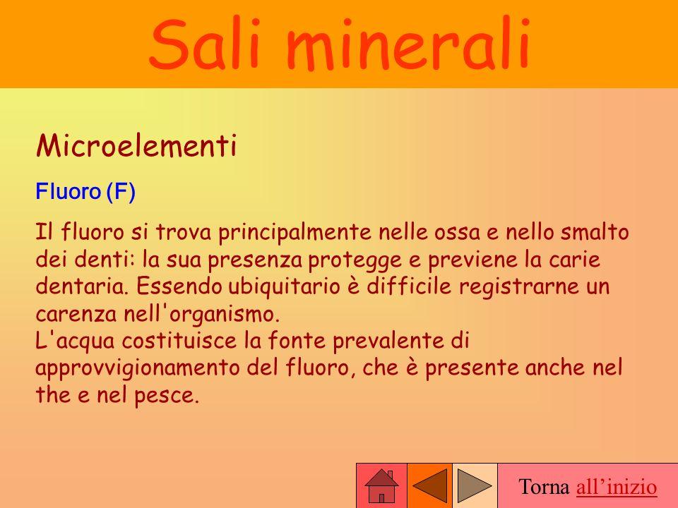 Torna allinizio Sali minerali Microelementi Fluoro (F) Il fluoro si trova principalmente nelle ossa e nello smalto dei denti: la sua presenza protegge