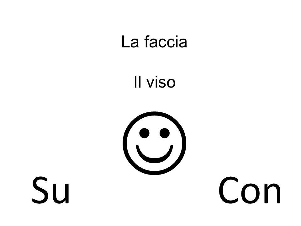 La faccia Il viso SuCon