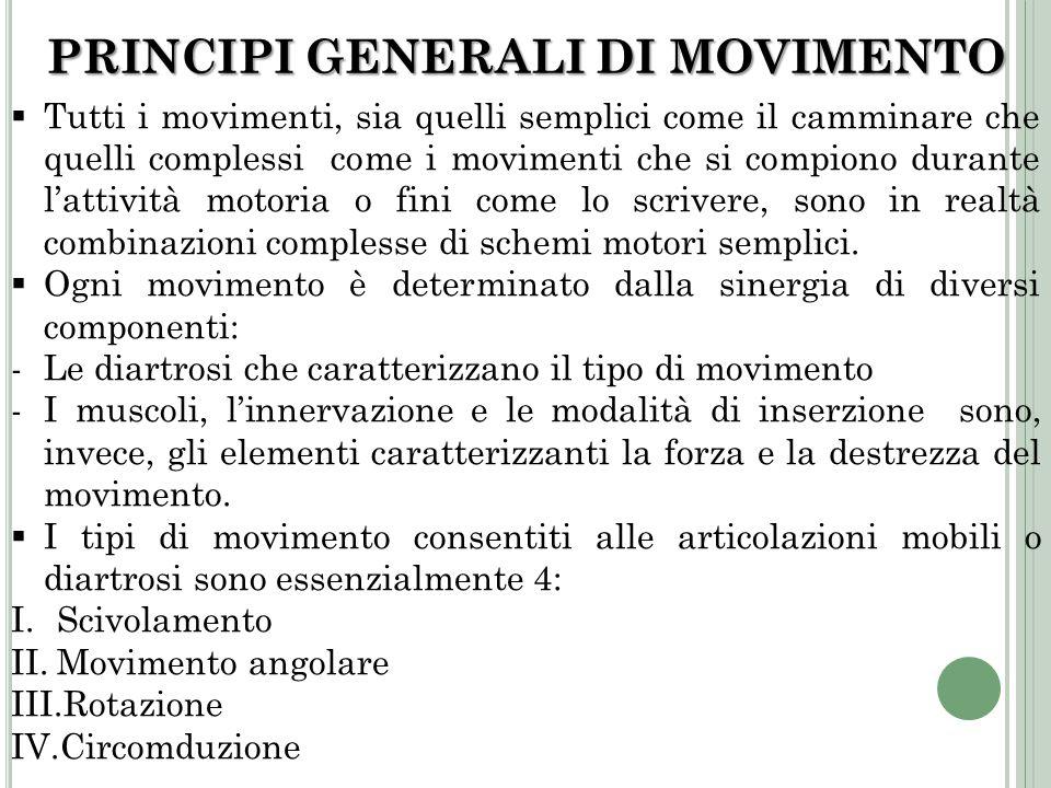 PRINCIPI GENERALI DI MOVIMENTO Tutti i movimenti, sia quelli semplici come il camminare che quelli complessi come i movimenti che si compiono durante