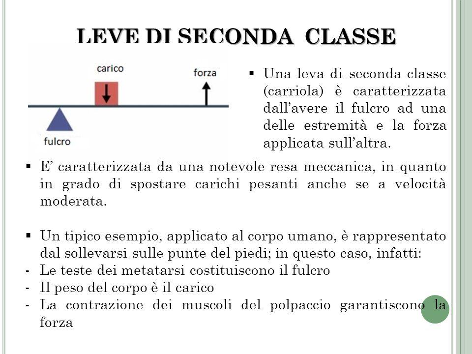 LEVE DI SECONDA CLASSE Una leva di seconda classe (carriola) è caratterizzata dallavere il fulcro ad una delle estremità e la forza applicata sullaltr