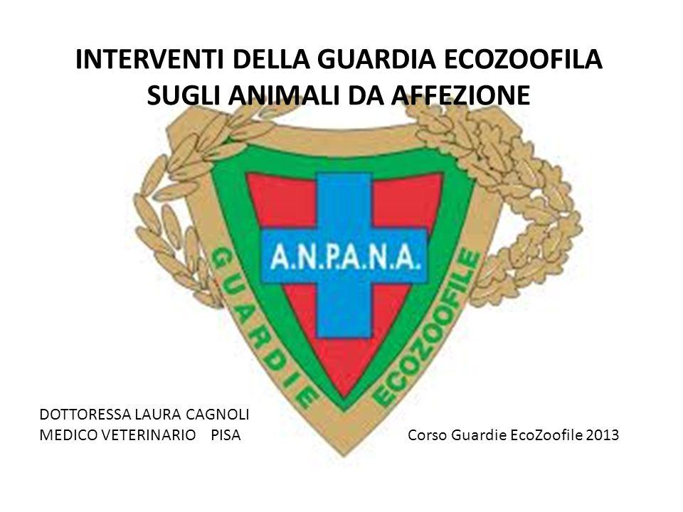 INTERVENTI DELLA GUARDIA ECOZOOFILA SUGLI ANIMALI DA AFFEZIONE DOTTORESSA LAURA CAGNOLI MEDICO VETERINARIO PISA Corso Guardie EcoZoofile 2013