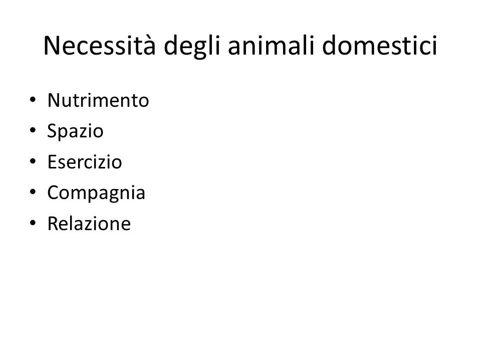 Necessità degli animali domestici Nutrimento Spazio Esercizio Compagnia Relazione