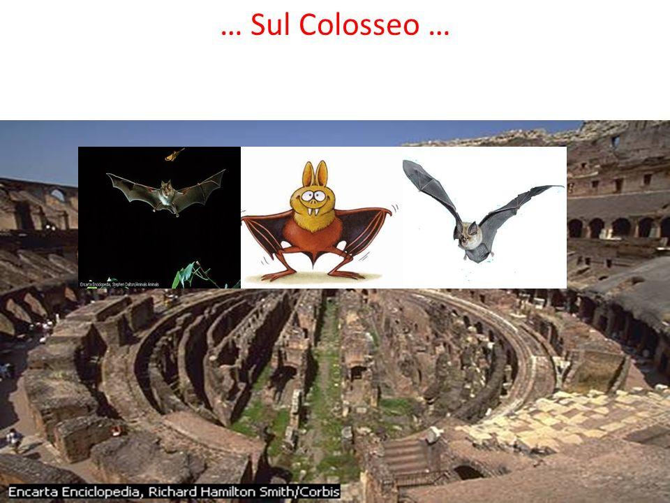… Sul Colosseo …