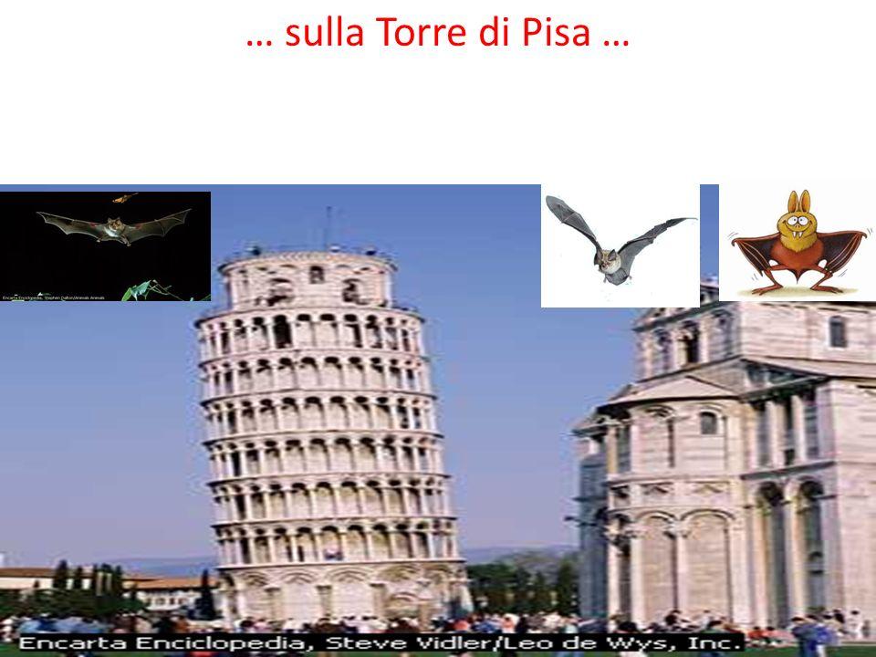 … sulla Torre di Pisa …