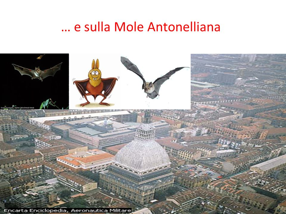 … e sulla Mole Antonelliana
