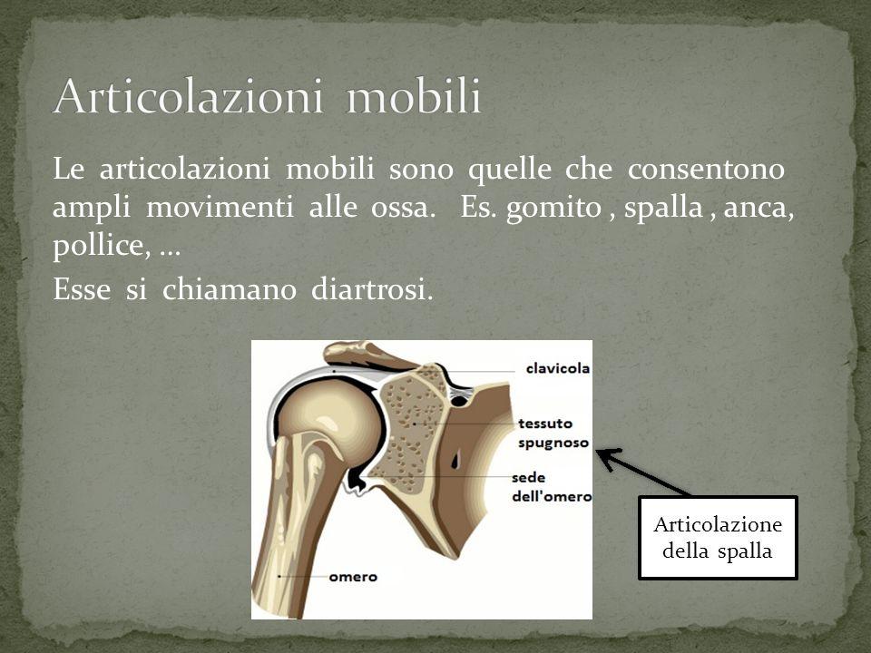 Le articolazioni mobili sono quelle che consentono ampli movimenti alle ossa. Es. gomito, spalla, anca, pollice, … Esse si chiamano diartrosi. Articol