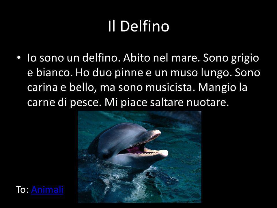 Il Delfino Io sono un delfino. Abito nel mare. Sono grigio e bianco. Ho duo pinne e un muso lungo. Sono carina e bello, ma sono musicista. Mangio la c