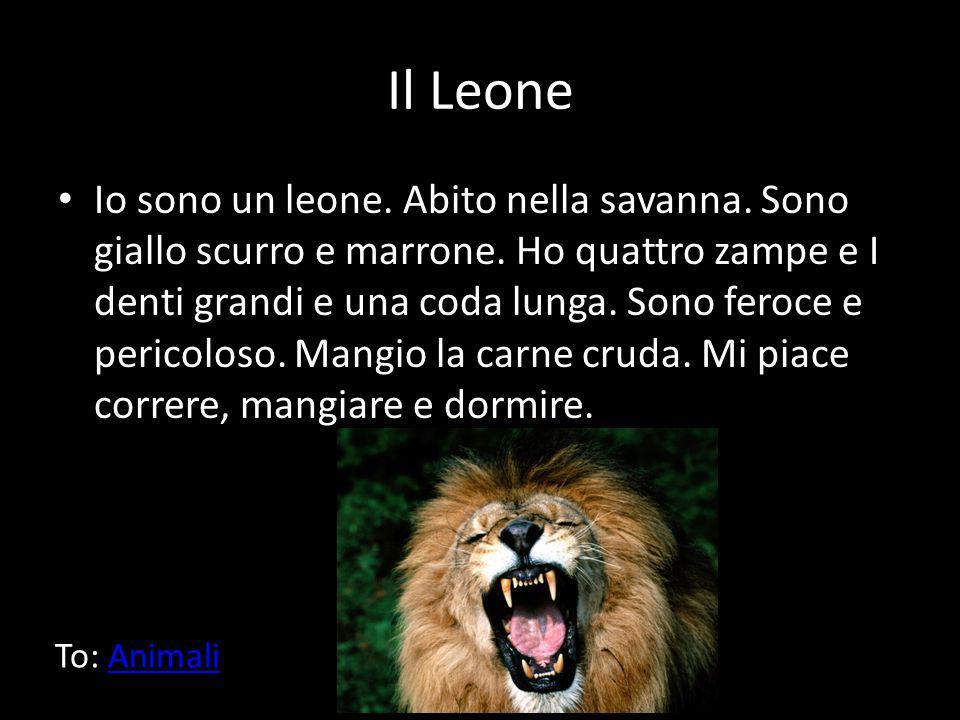 Il Leone Io sono un leone. Abito nella savanna. Sono giallo scurro e marrone. Ho quattro zampe e I denti grandi e una coda lunga. Sono feroce e perico