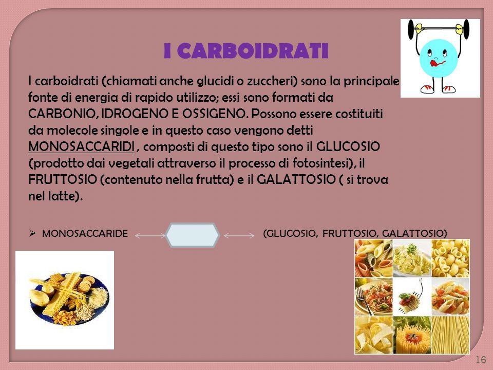 I carboidrati (chiamati anche glucidi o zuccheri) sono la principale fonte di energia di rapido utilizzo; essi sono formati da CARBONIO, IDROGENO E OS