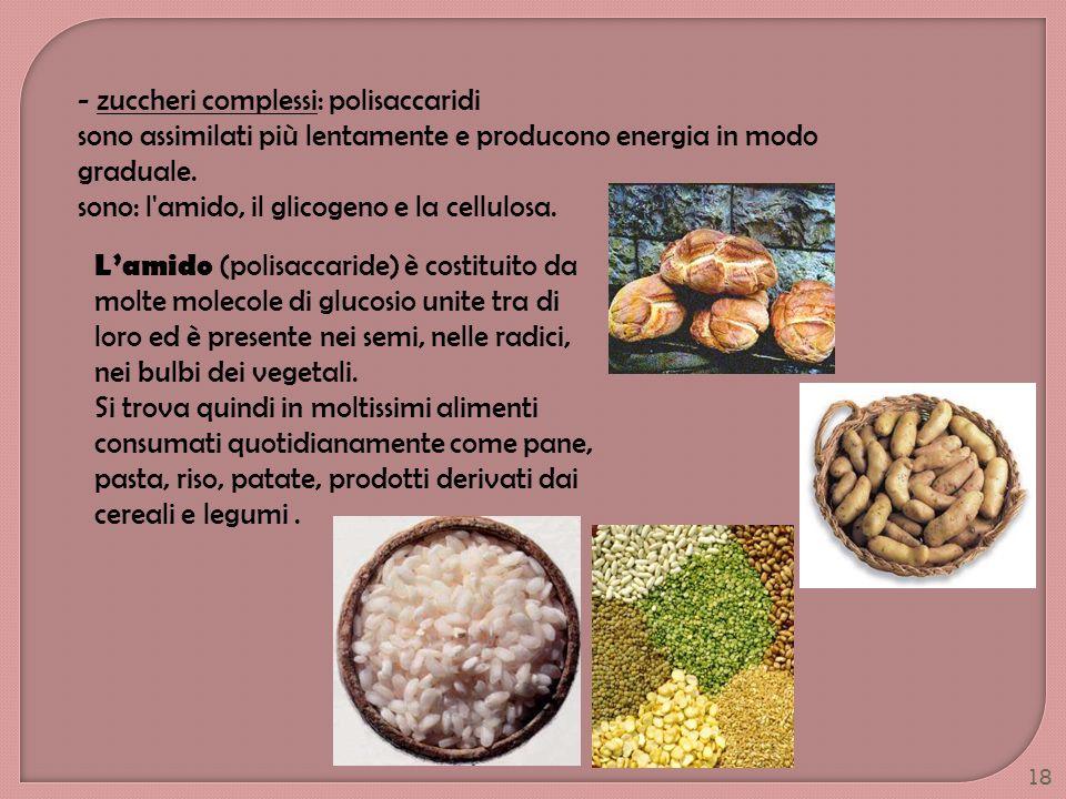 18 - zuccheri complessi: polisaccaridi sono assimilati più lentamente e producono energia in modo graduale. sono: l'amido, il glicogeno e la cellulosa