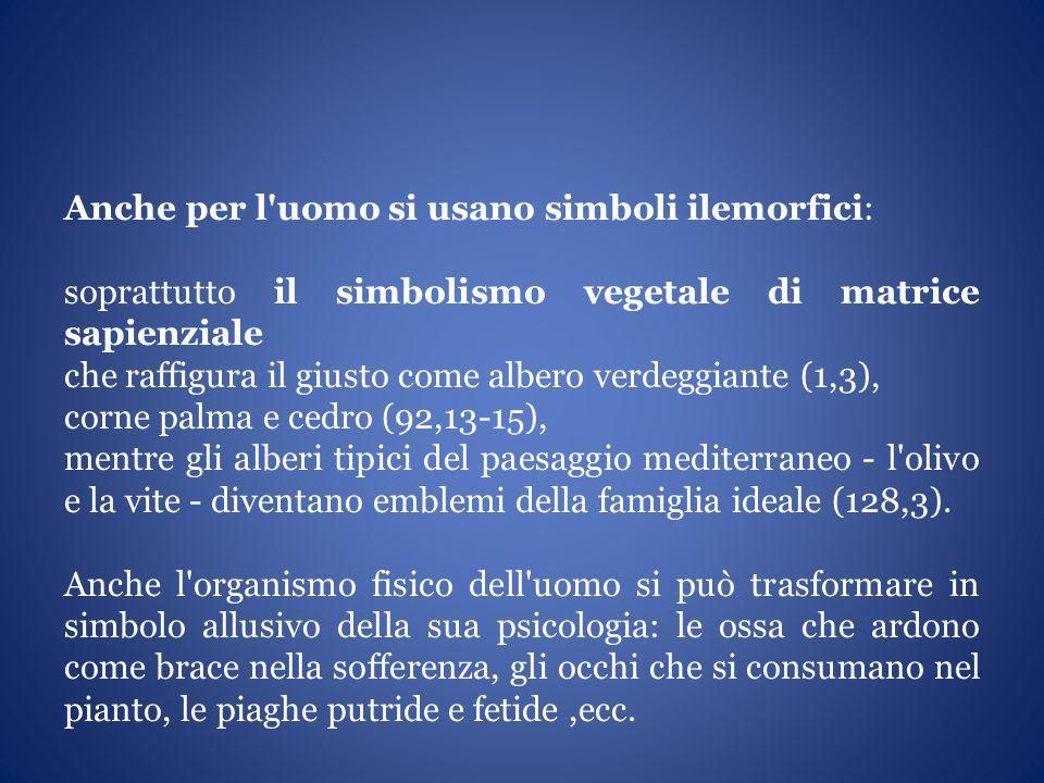 Anche per l'uomo si usano simboli ilemorfici: soprattutto il simbolismo vegetale di matrice sapienziale che raffigura il giusto come albero verdeggian