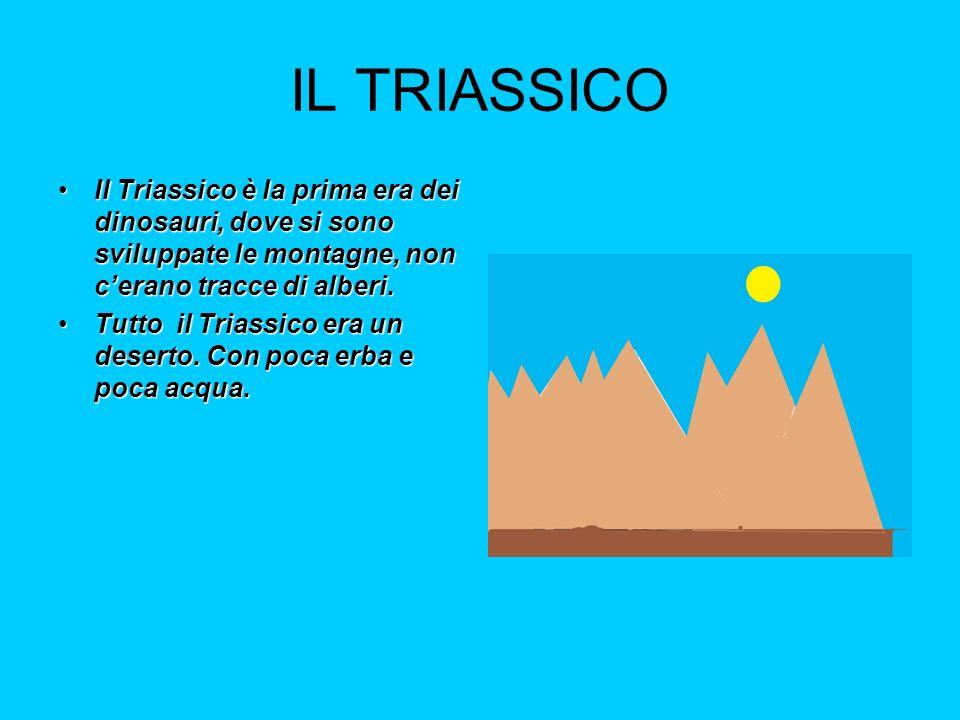 Il Giurassico Il Giurassico è la 2° era dei dinosauri, lacqua aumentò e sulle e sullerba montagne nacquero alberi.Il Giurassico è la 2° era dei dinosauri, lacqua aumentò e sulle e sullerba montagne nacquero alberi.