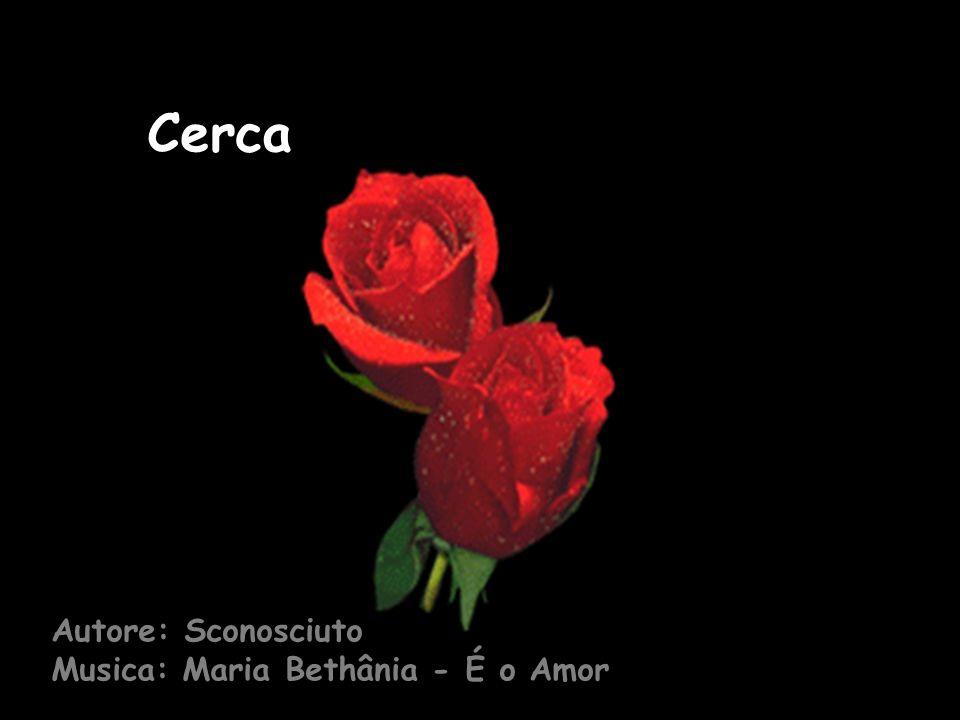 Autore: Sconosciuto Musica: Maria Bethânia - É o Amor Cerca