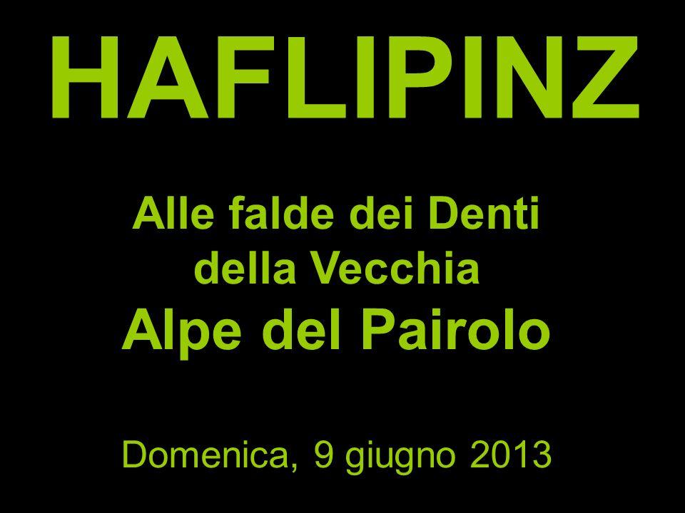 HAFLIPINZ Alle falde dei Denti della Vecchia Alpe del Pairolo Domenica, 9 giugno 2013