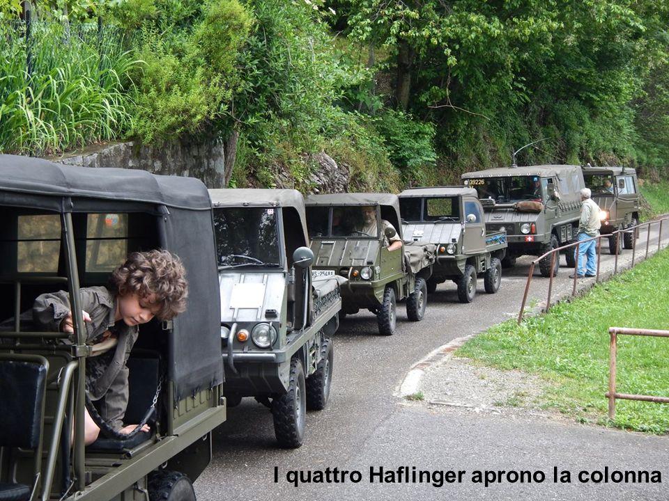 I primi arrivati I quattro Haflinger aprono la colonna