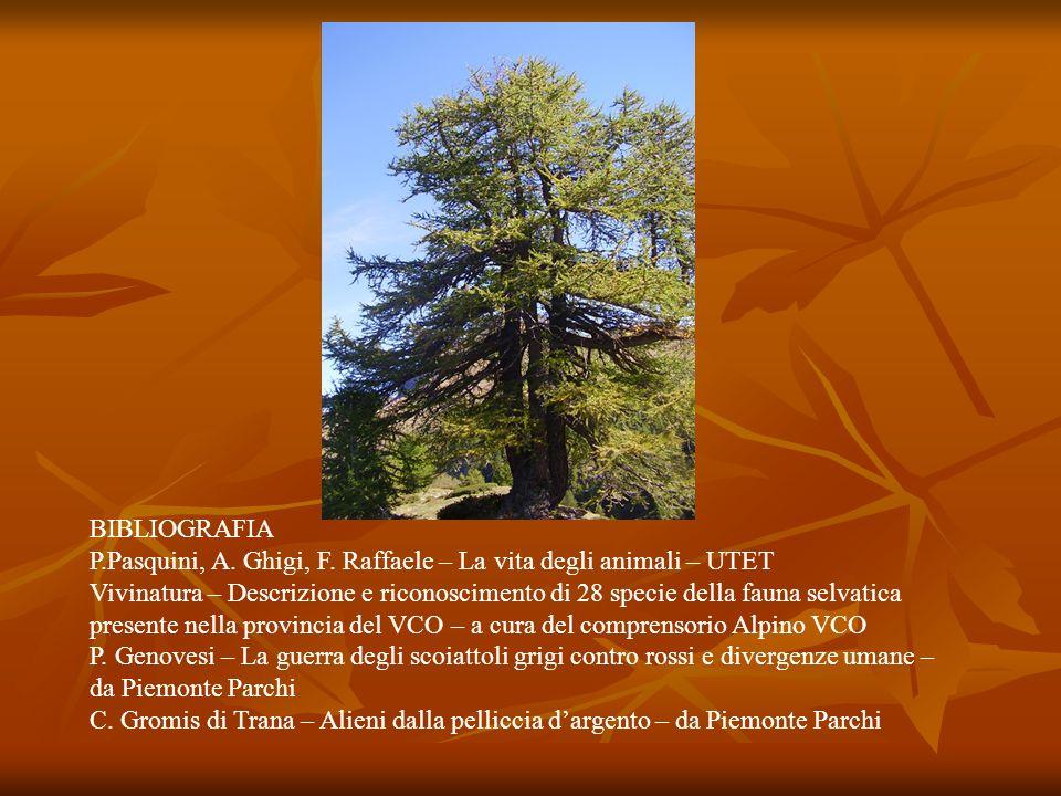 BIBLIOGRAFIA P.Pasquini, A. Ghigi, F. Raffaele – La vita degli animali – UTET Vivinatura – Descrizione e riconoscimento di 28 specie della fauna selva