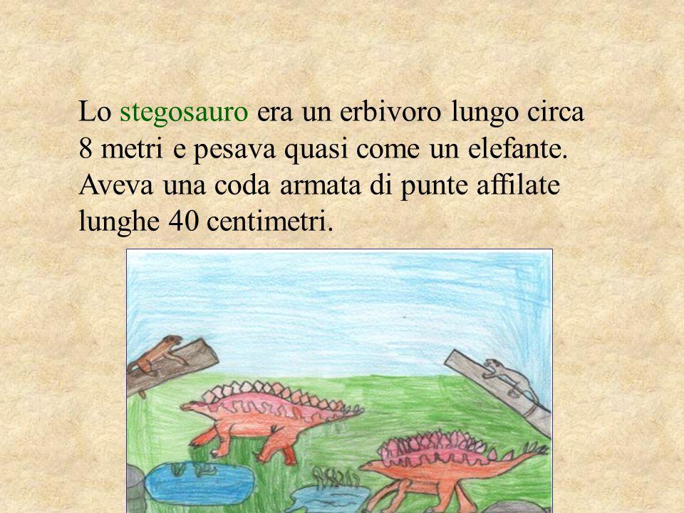 Lo stegosauro era un erbivoro lungo circa 8 metri e pesava quasi come un elefante. Aveva una coda armata di punte affilate lunghe 40 centimetri.