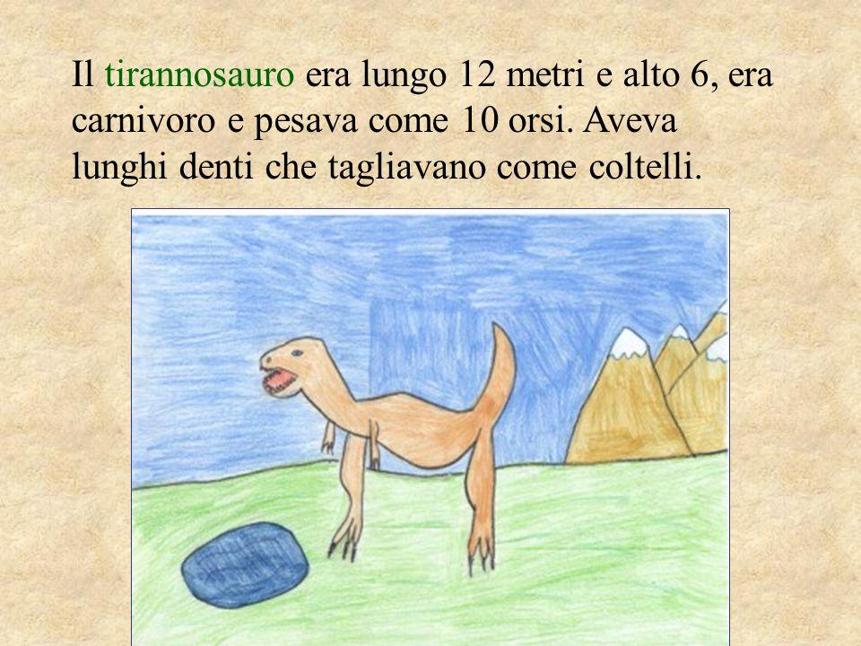Il tirannosauro era lungo 12 metri e alto 6, era carnivoro e pesava come 10 orsi. Aveva lunghi denti che tagliavano come coltelli.