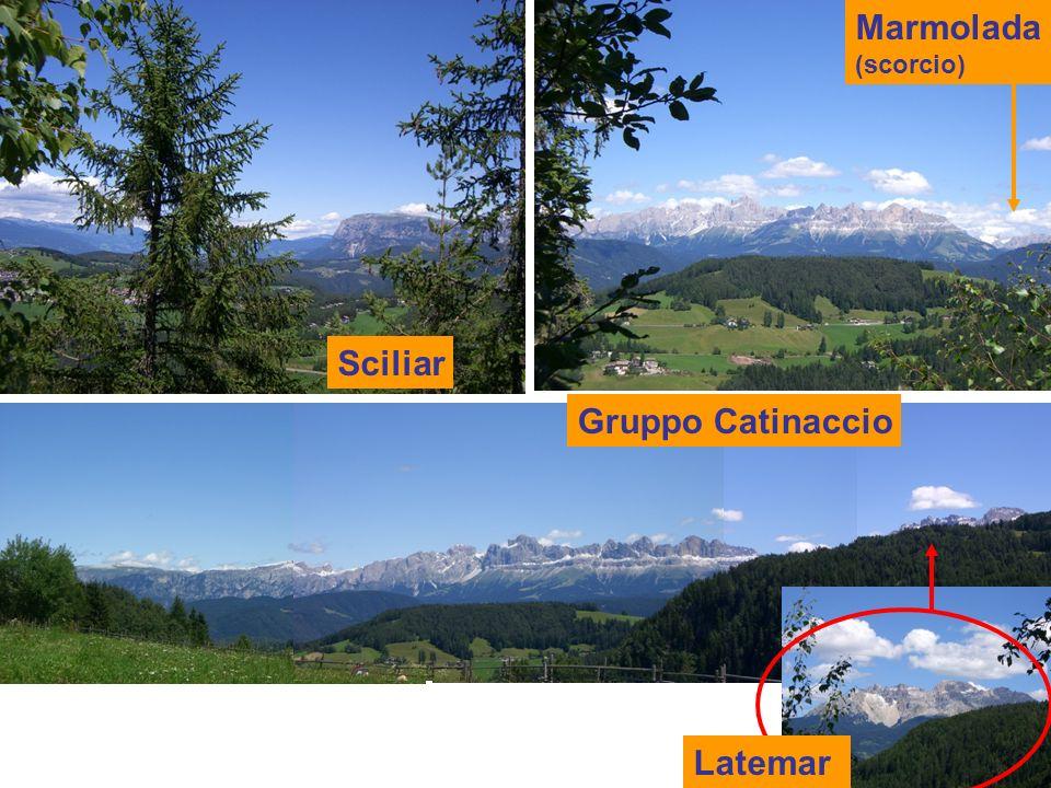 Latemar Sciliar Gruppo Catinaccio Marmolada (scorcio)