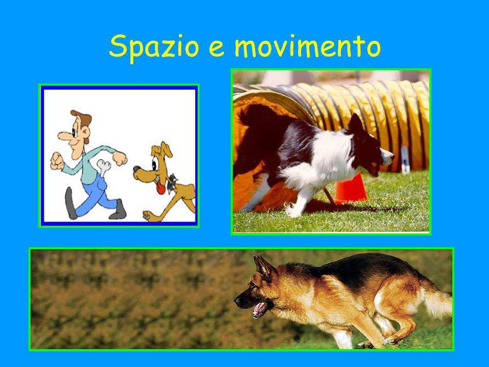 Spazio e movimento