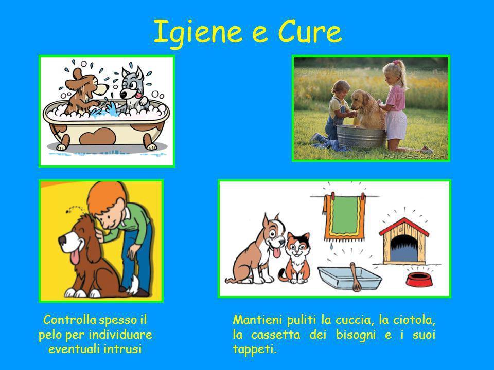 Igiene e Cure Controlla spesso il pelo per individuare eventuali intrusi Mantieni puliti la cuccia, la ciotola, la cassetta dei bisogni e i suoi tappeti.