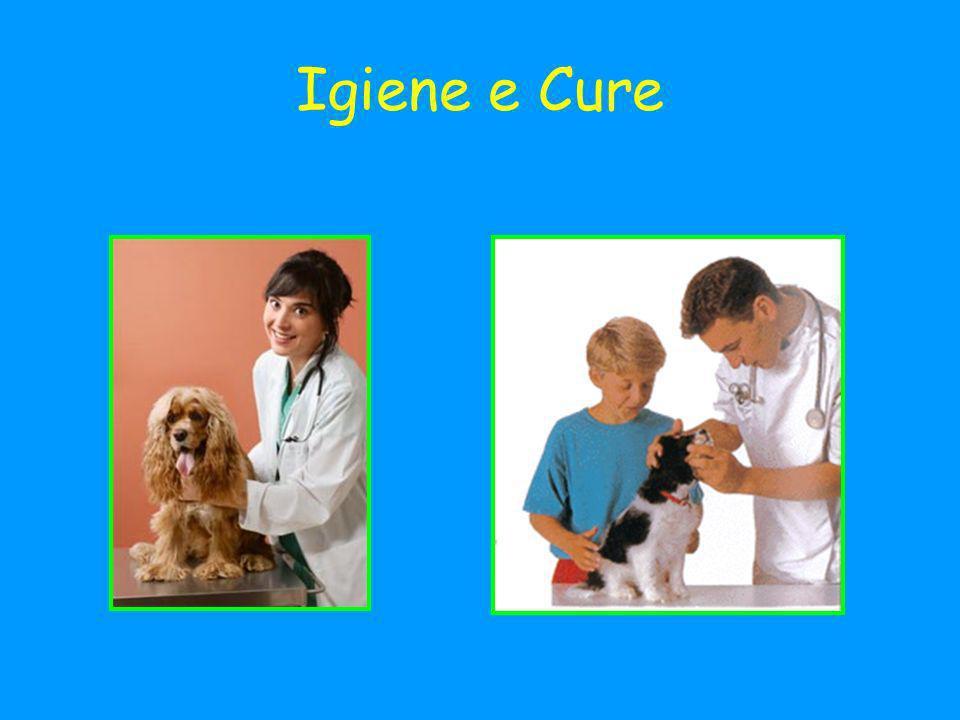 Igiene e Cure