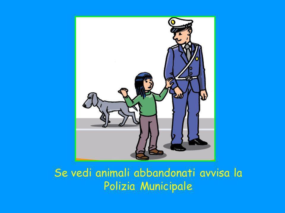Se vedi animali abbandonati avvisa la Polizia Municipale